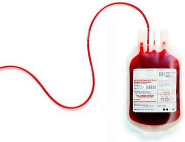 Il sangue umano non si compra: nuova sentenza del Consiglio di Stato